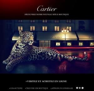 Cartier e commerce